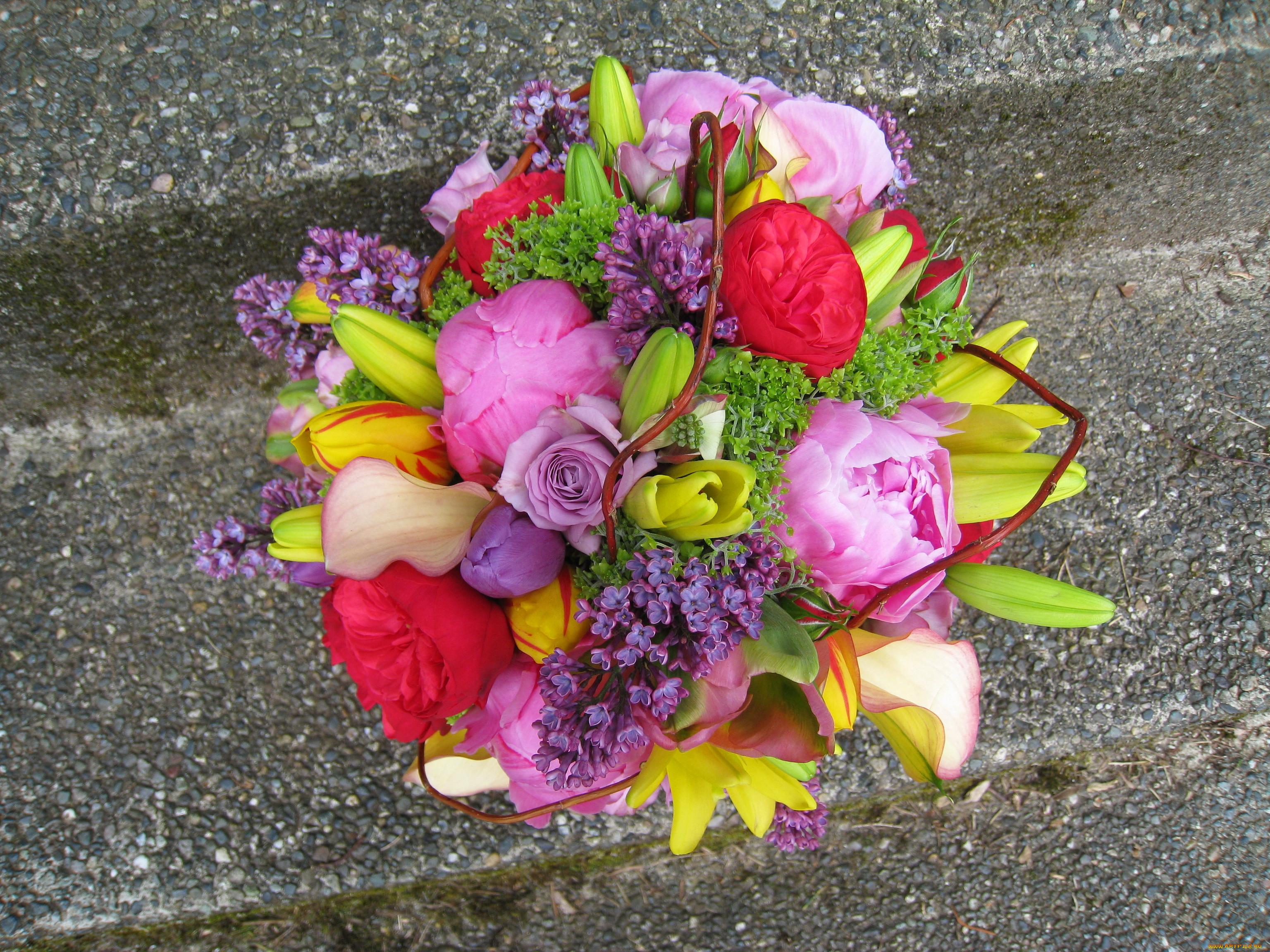 Обои цветы, букеты, , композиции, весна, тюльпаны, чашка, ваза, натюрморт, сирень  картинки на рабочий стол, скачать бесплатно. | 2304x3072